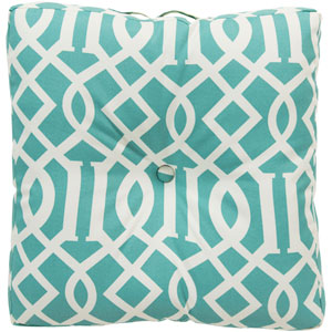 Storm Blue and Neutral Radiant Roman Numeral Pillow