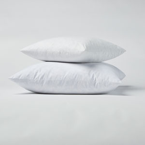 Feather 22 In. Pillow Insert, Set of 2