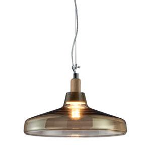 Dover Transparent One-Light Pendant