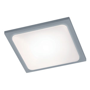 Trave Titanium and Light Grey LED Outdoor Ceiling Light