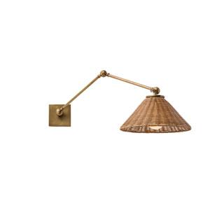 Padma Antique Brass One-Light Arm Swing