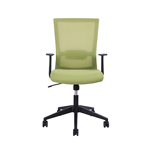 Green Rainbow Modern Ergonomic  Chair