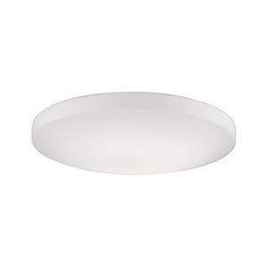 White 19-Inch One-Light Flush Mount