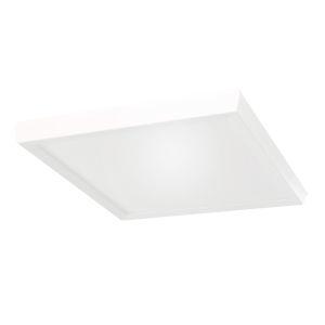Argo White 11-Inch LED ADA Flush Mount