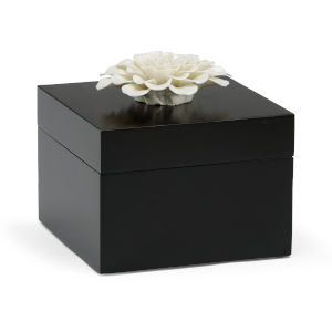 Black and White 7-Inch Zinnia Box