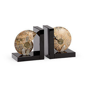Black Fossil Bookends