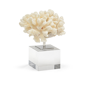 White Coral Mount- Small