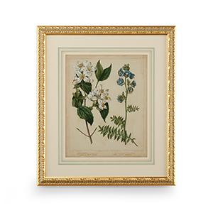 Gold Cottage Florals I Print