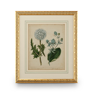 Gold Cottage Florals III Print