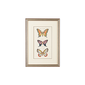 Silver Vertical Butterfly II Print