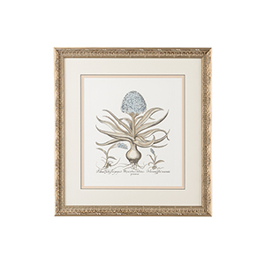 Silver Besler Botanical in Blue II Print