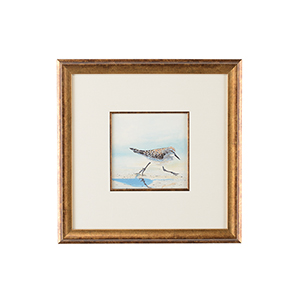Lisa Kahn Gold Sand Piper IV Watercolor Painting