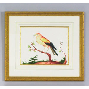 Yellow Wing Red Berry Wall Art