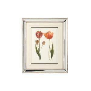 Silver Tulips - D Wall Art