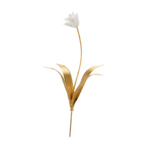 Gold and White Tulip Stem
