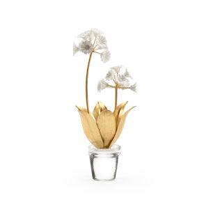Gold Six-Inch Auricula