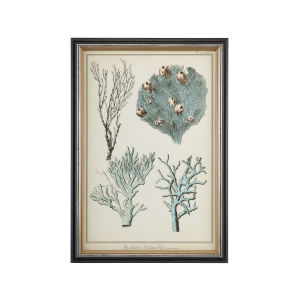 Black Oversize Coral Species II Wall Art