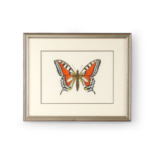Antique Silver Butterfly I Wall Art