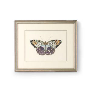Antique Silver Butterfly III Wall Art