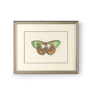 Antique Silver Butterfly IV Wall Art