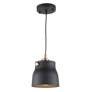 Euro Industrial Matte Black and Harvest Brass One-Light Mini Pendant