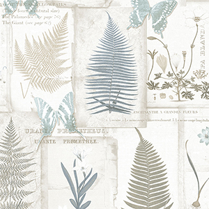 Parchment Ferns Blue and Taupe Wallpaper