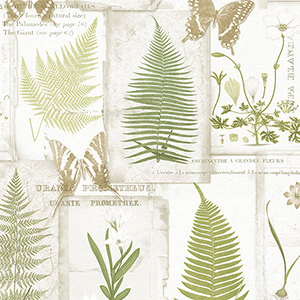 Parchment Ferns Beige and Green Wallpaper