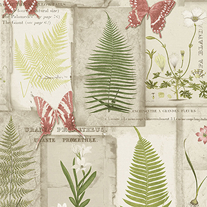 Parchment Ferns Red, Green and Brown Wallpaper