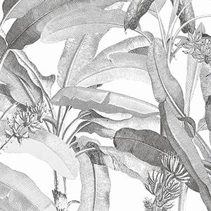 Black and White Polynesian Leaves Wallpaper