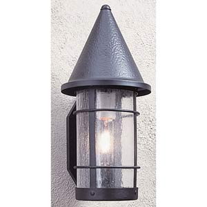 Valencia Large Clear Seedy Outdoor Sconce