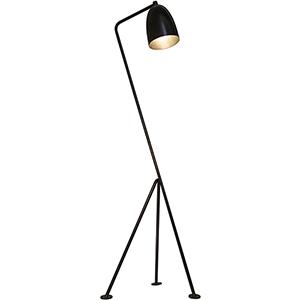 Asti Metal One-Light Floor Lamp