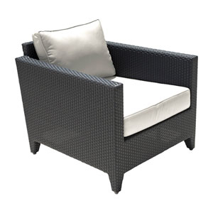 Onyx Black Outdoor Lounge Chair with Sunbrella Linen Champagne cushion