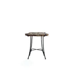 Petrified Brown Side Table