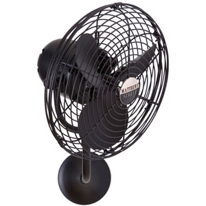 Michelle Parede Black 13-Inch Indoor/Outdoor Wall Fan with Metal Blades