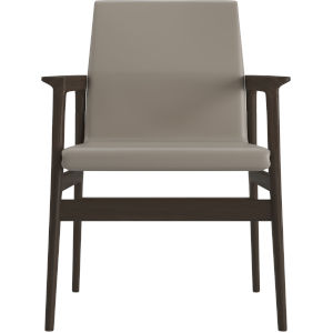 Stanton Castle Gray Eco Leather Dining Arm Chair