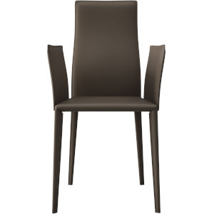 Lucca Reclaimed Dove Gray Dining Chair
