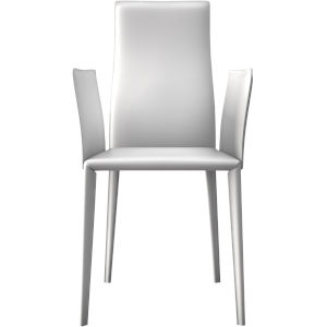 Lucca Reclaimed White Dining Chair