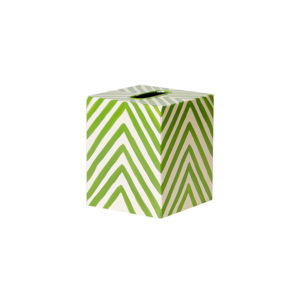 Green and Cream Kleenex Box