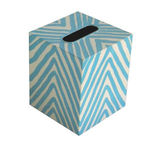 Turquoise and Cream Kllenex Zebra Box