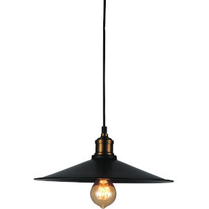 Brave Black One-Light 13-Inch Pendant