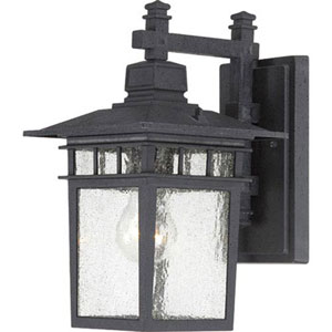 Hayden Textured Black 12-Inch One-Light Outdoor Wall Sconce with Seeded Glass