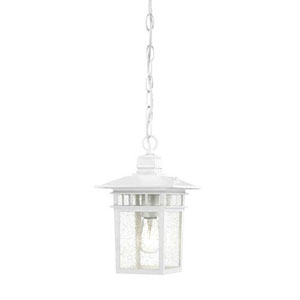 Grace White One-Light Outdoor Pendant with Seeded Glass