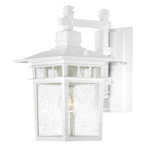 Grace White 14-Inch One-Light Outdoor Wall Sconce with Seeded Glass