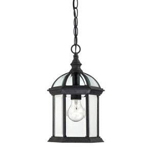 Webster Textured Black One-Light Outdoor Pendant