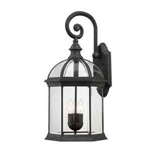 Webster Textured Black Three-Light Outdoor Wall Sconce