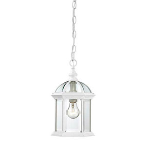 Webster White One-Light Outdoor Pendant