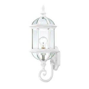 Webster White 22-Inch One-Light Outdoor Wall Sconce with Beveled Glass