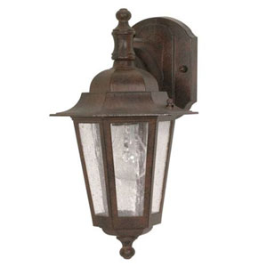 Evelyn Old Bronze 13-Inch One-Light Outdoor Wall Sconce with Seeded Glass