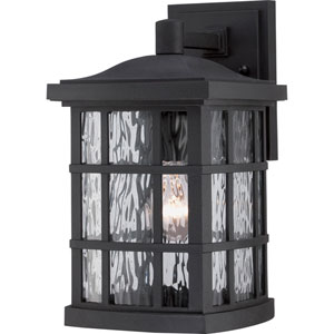 Hayden Black 13-Inch One-Light Outdoor Wall Sconce