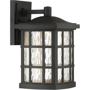 Hayden Black 13-Inch LED Outdoor Wall Sconce